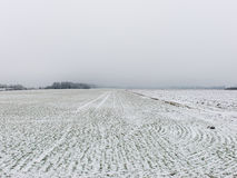 Winter rural scene with fog and white fields Stock Photo