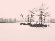 Winter rural scene with fog and white fields - retro vintage eff Stock Photography