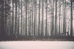 Winter rural scene with fog and white fields - retro vintage eff Stock Images