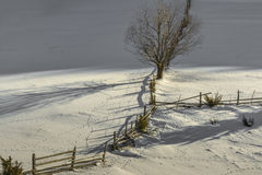 Winter rural scenery Royalty Free Stock Images