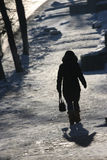 Winter rural silhouette Stock Photo