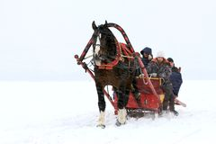 Winter at Russia. Team driver lead horse at winter way to celebrate the occasion end of Russian Winter Stock Photo