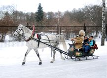Winter Russian fun, sleigh pulled by horse. Sleigh pulled by a white horse driven by a whip dressed in an old costume. There is a family having fun. Photo is Stock Photos