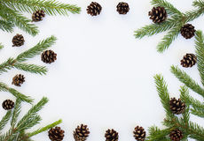 Winter rustic round frame with fir branches and pine cones. Flat lay chrismas round frame with fir branches and pine cones Stock Images