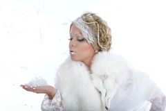 Winter's coldness Royalty Free Stock Photo
