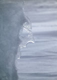 Winter's Face. Nature sculpts a face of the winter Royalty Free Stock Image