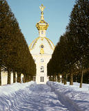 Winter's garden in Peterhof. Winter's avenue in garden in Peterhof, with gold palace dome. St. Petersburg, Russia (vertical Royalty Free Stock Image