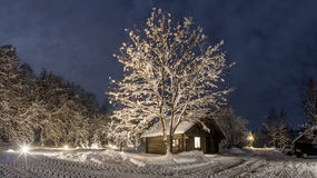 Winter's night at countryside Royalty Free Stock Photo