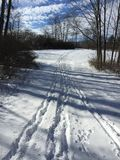 Winter`s path Royalty Free Stock Images