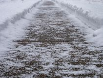 Winter's Path royalty free stock photo