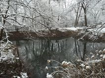Winter's pond Royalty Free Stock Photography