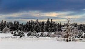 A winter`s scene Stock Image