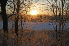 Winter& x27; s-skönhet Arkivfoton