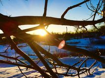 Winter's tale. Sunset during the winter Royalty Free Stock Photos