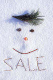 Winter sale. The image of the face made of cones, branches and carrots, and text sale on snow Stock Photo