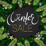 Winter sale background. Holiday composition with tree branches  Royalty Free Stock Images