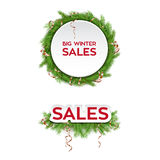 Winter Sale Design Template. With  Fir Tree Branches and Decorations Stock Image