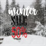 Winter sale lettering design season shopping template special discount poster over blur snowy fir tree forest background. Flat vector illustration stock illustration