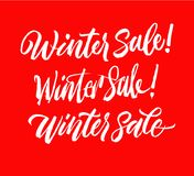 Winter sale lettering set. Handwriting calligraphy sale inscription. Good for spring sale time. Sale Collection vector illustration