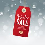 Winter sale poster template. Hanging red gift tag, label with gingerbread cookie, falling snowflakes bokeh lights and. Blurred background, modern vector stock illustration