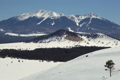 Winter, San Francisco Peaks Royalty Free Stock Photo