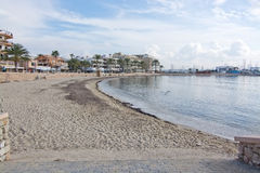 Winter sandy beach. CAN PASTILLA, MALLORCA, BALEARIC ISLANDS, SPAIN - DECEMBER 14, 2015: Winter sandy beach seagrass and birds on December 14, 2015 in Balearic Royalty Free Stock Photography
