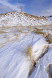 Winter, Saugatuck Dunes. Winter landscape with fresh drifted snow and grasses, Saugatuck Dunes State Park, Lake Michigan, Michigan, USA Royalty Free Stock Photography