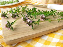 Winter savory on cutting board Stock Photography