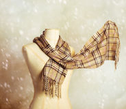 Winter Scarf Royalty Free Stock Images