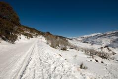 Winter Scene Stock Photo