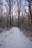 Winter Scene. Snow covered trail Stock Photos