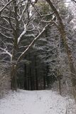 Winter Scene. Snow covered trail with a cave Royalty Free Stock Photo