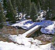 Winter Scene. Aspen Colorado Stream stock photos