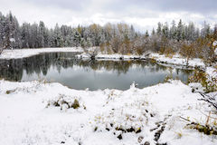 Winter Scene. Snow-covered woods and pond royalty free stock photography