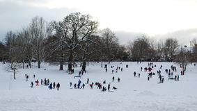 Winter scene. With people having fun on the snow Royalty Free Stock Image