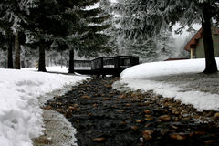 Winter Scene. Snow, trees and a running stream Stock Photos