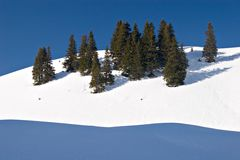 Winter Scene. Trees on snow hill with deep blue sky in the Swiss Alps Stock Photo