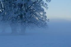 Winter scene 2 Royalty Free Stock Photography