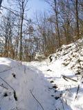 Winter scene. In snow stock photo