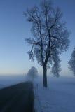 Winter scene 3 Royalty Free Stock Photo