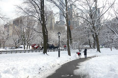 Winter in New York City Royalty Free Stock Image