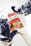 Winter scene Stock Images