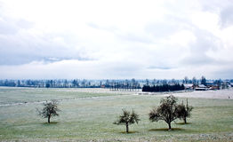 Winter scene. Country landscape with snowy fields. Switzerland Royalty Free Stock Image