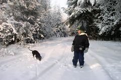 Winter Scene. A boy and a dog in winter royalty free stock photo