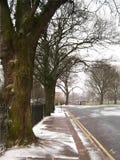 Winter Scene. Wintry roadside scene Stock Photos