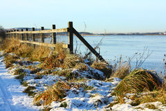 Winter scene. With grrass and water Royalty Free Stock Photography