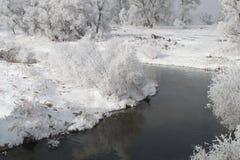 Winter Scene 7846 Stock Photography