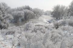 Winter Scene 7851 Stock Photos
