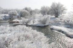 Winter Scene 7855 Stock Photo