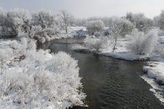 Winter Scene 7857 Stock Photo